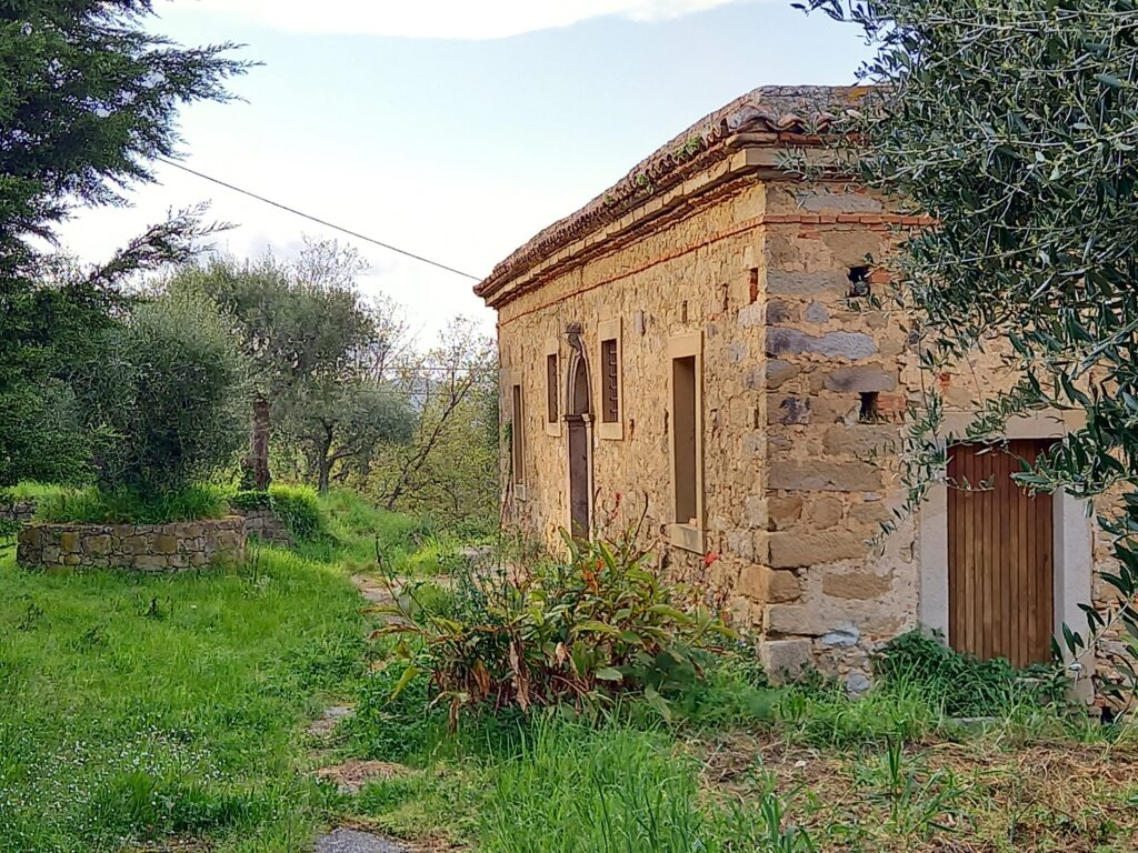 palazzo salleo zigale