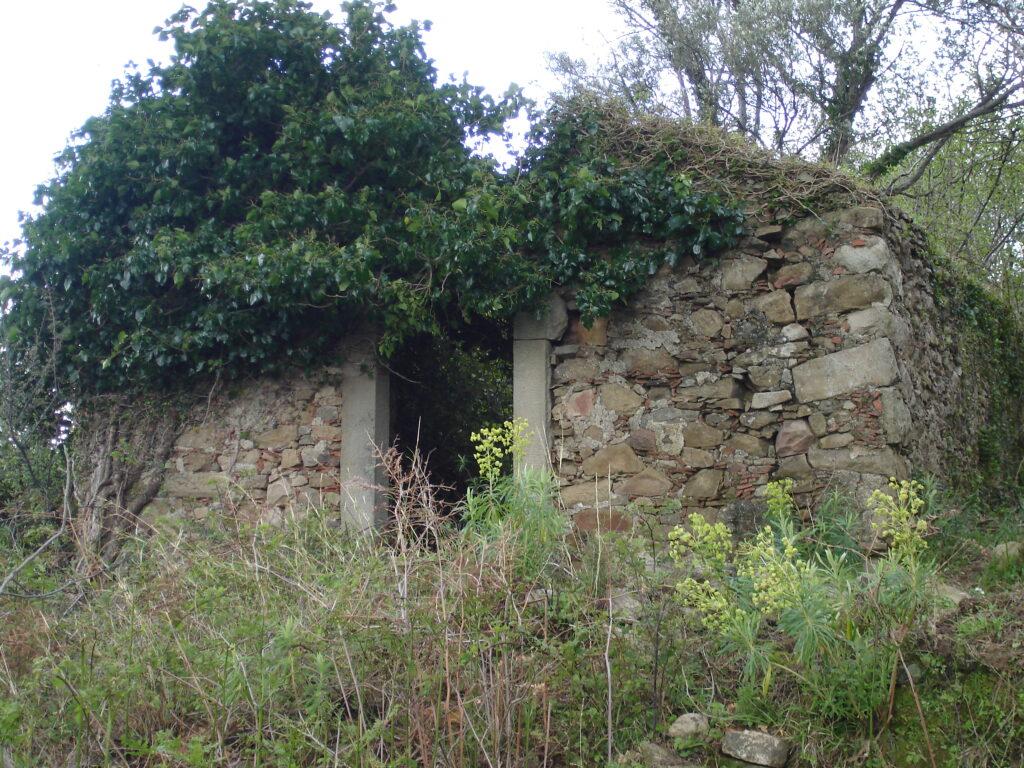chiesa santa maria xilona